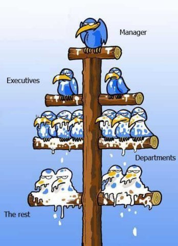 Hierarchical organization is literally shit